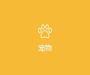 宠物APP开发