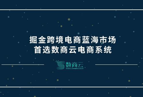 掘金跨境電商藍海市場,首選數商雲電商系統