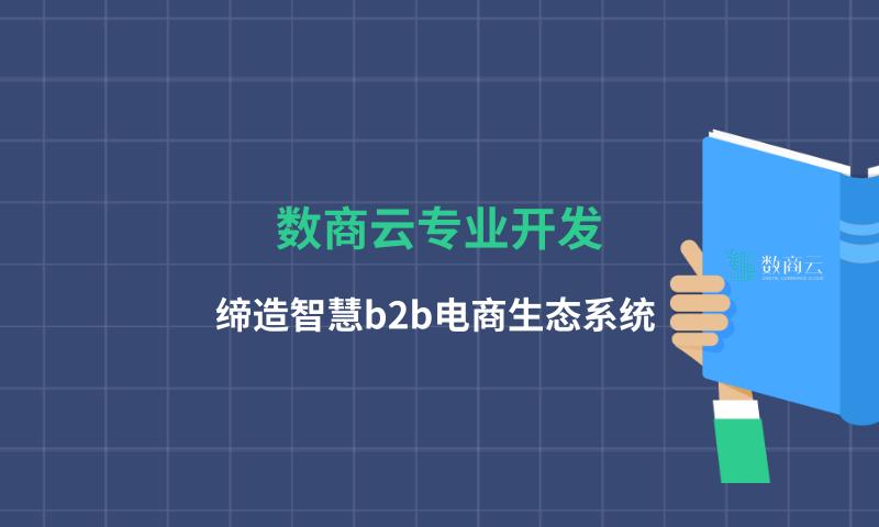 數商云專業開發,締造智慧b2b電商生態系統