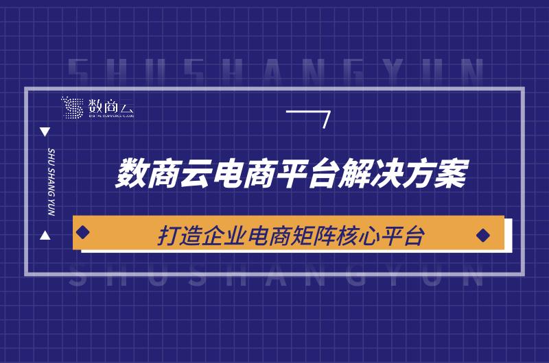 数商云电商平台新京网址丨打造企业电商矩阵核心平台