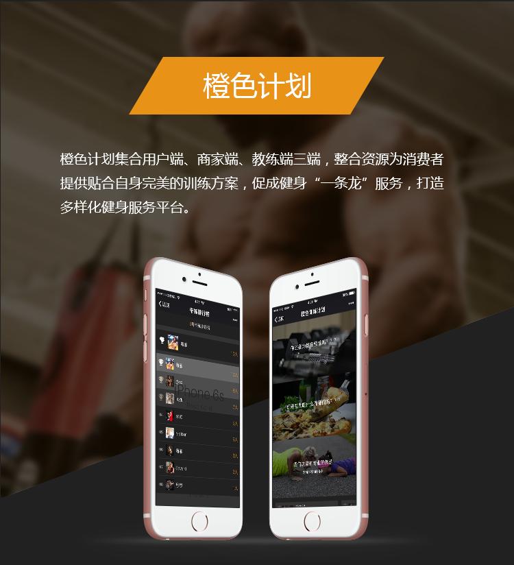手机社交网站开发