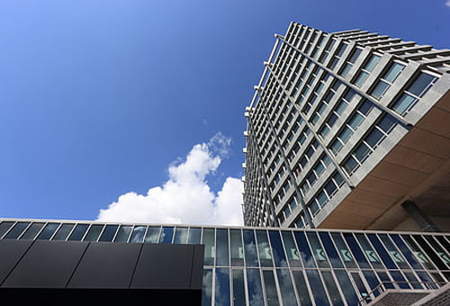 APP定制外包公司解决广州企业迫切的开发需求